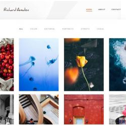 THE RECHARD ADEDON: PHOTOGRAPHY WEBSITE