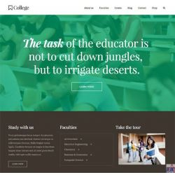 THE SCHOOL: SCHOOL WEBSITE